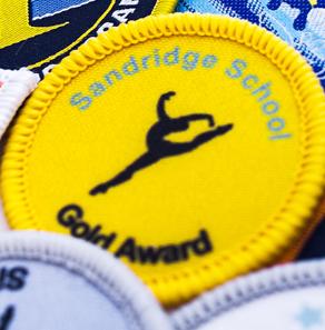 Gymnastic badges